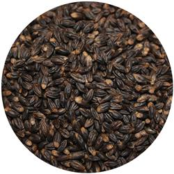Barley Black