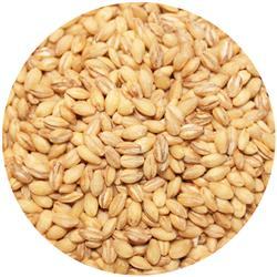 Barley Pearled