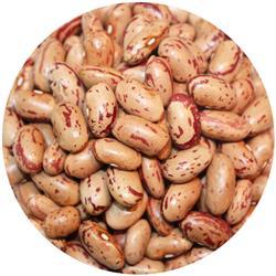 Borlotti Beans Australian
