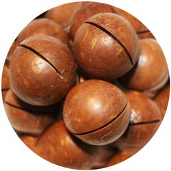 Macadamia Roasted In Shell