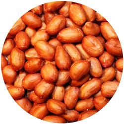 Peanut Beer Nuts Unsalted