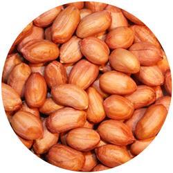 Peanut Raw Vk Runner