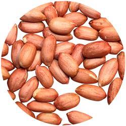 Peanut Raw Vkj