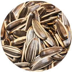 Sunflower Seeds - Unsalted